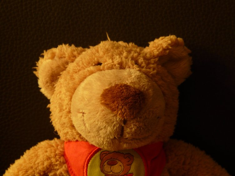 teddy-bear-11282